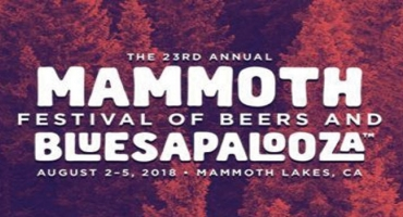 Our Local Breweries at Mammoth Bluesapalooza Photo